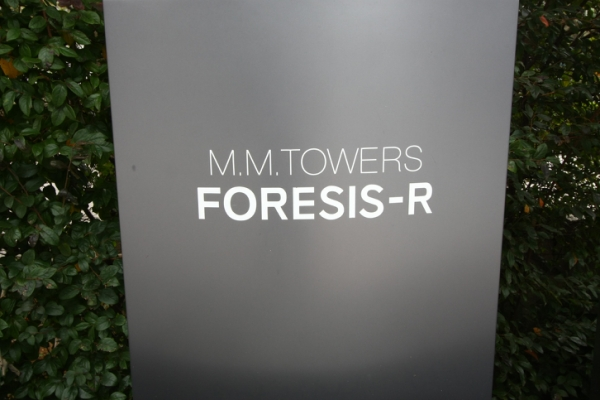 M.M.TOWERS FORESIS-R 画像11